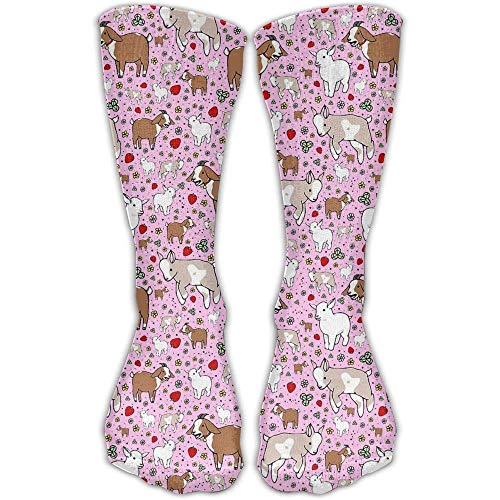 UFHRREEUR AZNM Guinea Pig with Cookie Men Women Printed Crew Socks Funky Cotton Socks for Home ()