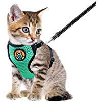 AWOOF Arnes Gato y Correa a Prueba de Escape, Chaqueta Ajustable para Caminar con Gatito Cat Kitten con Anillo de Correa de Metal, Chaleco Suave y Transpirable para Mascotas pequeñas