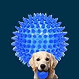 #6: Pets Empire Safe Pet Toy Squeaker Ball - Dogs Chewing and Cleaning Toy For Large Medium Dog, 1 Pack, Colors Will Vary
