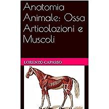 Anatomia Animale: Ossa Articolazioni e Muscoli (Italian Edition)