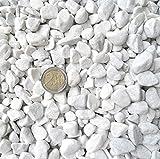Doubleyou Geovlies & Baustoffe 5 kg Carrara Kies - Marmorkies weiß - Körnung 18-25 mm
