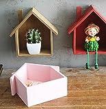 jellbaby creativo pequeña casa Multi–propósito multi–carne planta...