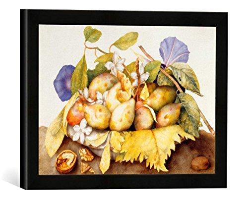 Gerahmtes Bild von Giovanna Garzoni Schale mit Pflaumen, Jasminblüten und Walnuß, Kunstdruck im hochwertigen handgefertigten Bilder-Rahmen, 40x30 cm, Schwarz matt - Garzoni Schale