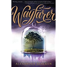 Passenger: Wayfarer: Book 2 (English Edition)
