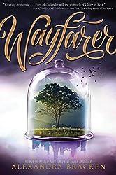 Wayfarer: Book 2 (Passenger)