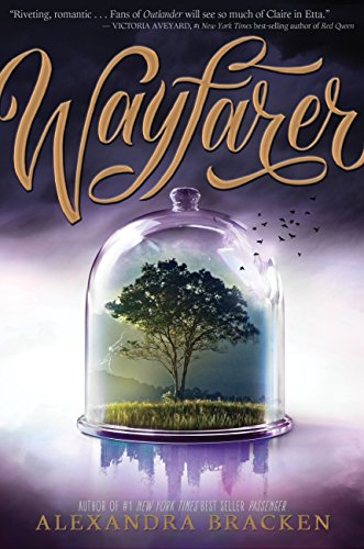 Wayfarer: Book 2 (Passenger 1) (English Edition)