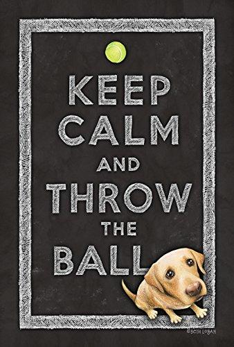 Toland Home Garden Keep Calm and Throw The Ball 71,1 x 101,6 cm Dekorative niedliche Welpe Hund doppelseitige Hausflagge