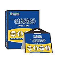 Lepakshi Chapter Cockroach Trap Organ Rice Murder Rice Moth Outdoors Lure Agent