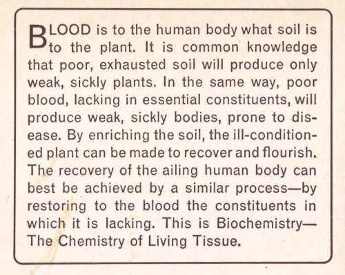 Image of Biochemic Handbook: How to Get Well and Keep Fit with the Biochemic Tissue-Salts Originated by Dr. W.H. Schuessler by W. H. Schuessler (1986-06-30)