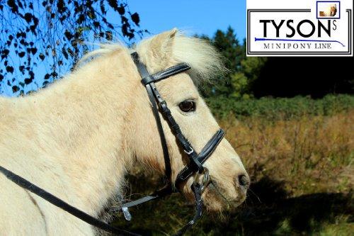 Tysons Breeches MMS MS S Minishetty Mini Shetty Reithalfter Trense Falabella Minipony Extra ZART + Zügel Stick (Shetty)