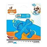 Nylabone Kauspielzeug für Welpen Zahnen Knochen aus Rindfleisch Geschmack Hund