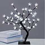 GCCLCF Cherry Tree Fairy Lights, Beautiful Simulation 48 LED Cherry Blossom Bonsai Flexible Branches Cherry Tree Desk Lamp for Home Decoration (Warm White)