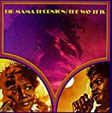 Big Mama Thornton Voces femeninas de blues