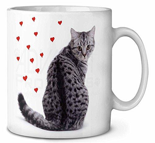 Argento Tabby Cat con cuori rossi Tazza di caffÚ di compleanno regalo di natale