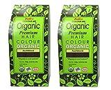 Radico Aschblond 2er-Pack Colour Me Organic Pflanzenhaarfarbe (bio, vegan, Naturkosmetik) Aschx2
