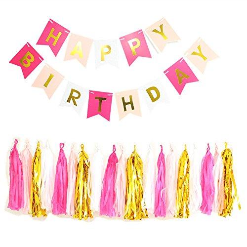 Wingbind Geburtstag Party Banner Kit, Alles Gute Zum Geburtstag Party Dekoration, Bunting Banner mit Papier Quasten, Party Supplies Party Favors für Kinder Erwachsene (21st)