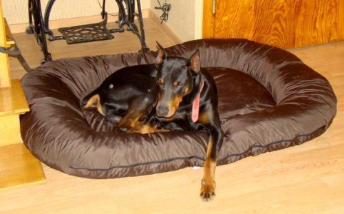 Bild: Hundeliegebett 140x95x17 brauner abnehmbarer Bezug