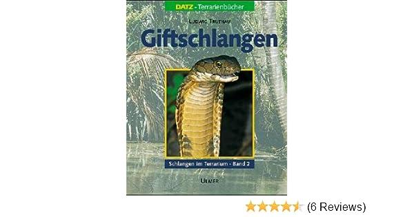 Schlangen Im Terrarium 2 Giftschlangen Haltung Pflege Und Zucht