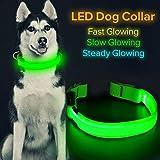 HiGuard LED-Hundehalsband, wiederaufladbar, leuchtendes Haustierhalsband, mit LED-Licht und Nylon-Gurtband, perfekt für kleine, mittelgroße und große Hunde