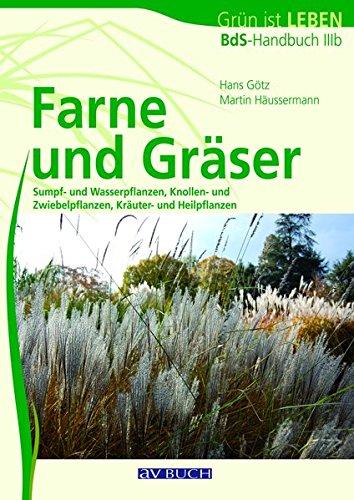 Farne und Gräser: Bds-Handbuch IIIb