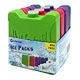 WORLD-BIO 4 x Packs de Glace Réfrigérants Glacière - Petits mais durables - Froid congélateur Sac glacière boîtes déjeuner...