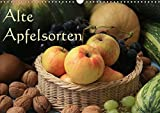 Alte Apfelsorten (Wandkalender 2017 DIN A3 quer): Alte Apfelsorten - vom Berlepsch bis zum Tiroler Maschanzker - frisch angerichtet (Monatskalender, 14 Seiten ) (CALVENDO Lifestyle)