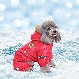 Wintermantel für Hunde, Jacke, USA-Air-Force-Motiv, Kapuzenjacke für Haustiere, Kleidung für kleine Welpen, Medium, Overall mit Kapuze, Schneeanzug, Pullover, Hundebekleidung, rotes, winddichtes Mantel