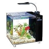 Finest-Filters Mini aquarium avec filtre et éclairage LED 15 litres