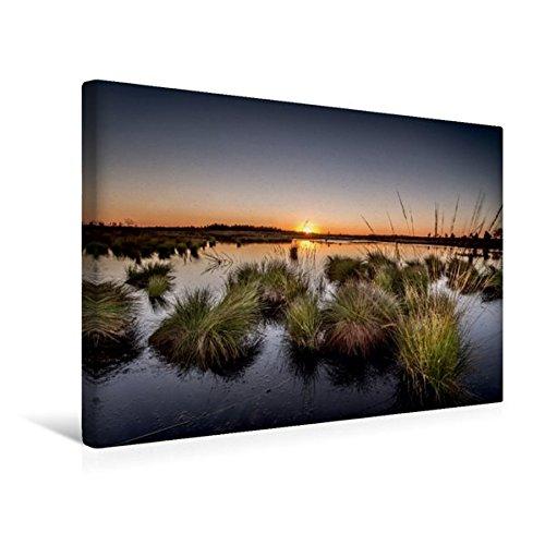 Premium Textil-Leinwand 45 cm x 30 cm quer, Die letzten Sonnestrahlen im Brackevenn   Wandbild, Bild auf Keilrahmen, Fertigbild auf echter Leinwand, Leinwanddruck (CALVENDO Natur)