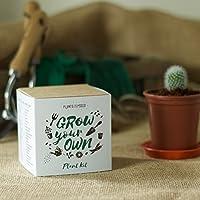 Fai Crescere Il Tuo Cactus Barrel Kit Pianta