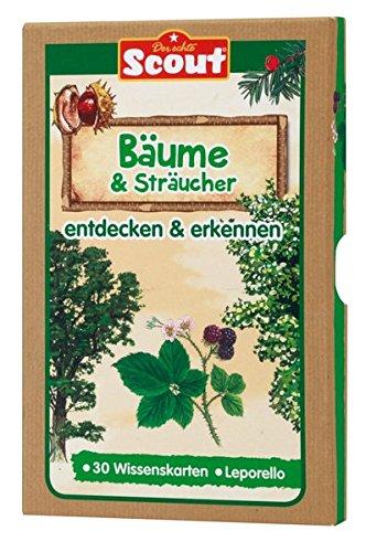 Scout Lernkarten-Box - Bäume & Sträucher: entdecken & erkennen