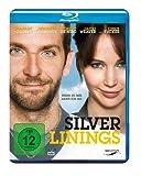 Silver Linings kostenlos online stream