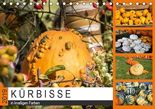 Kürbisse in knalligen Farben (Tischkalender 2019 DIN A5 quer): Kürbisgewächse in unterschiedlichen Formen und Farben (Monatskalender, 14 Seiten ) (CALVENDO Lifestyle) (2019 Poster Halloween)