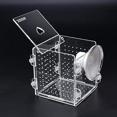 Tandou Aquarium-Zucht-Isolationsbox, Brutkasten für Babyfische