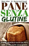 Pane Senza Glutine (Italian Edition)