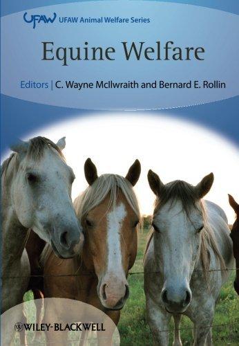 Equine Welfare (UFAW Animal Welfare) by Rollin (April 8, 2011) Paperback