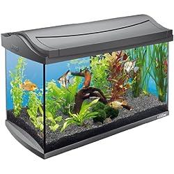 Tetra AquaArt Kit de acuario completo Discover Line, 60L 60 L