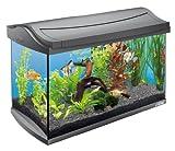 Tetra AquaArt Kit de acuario completo Discover...