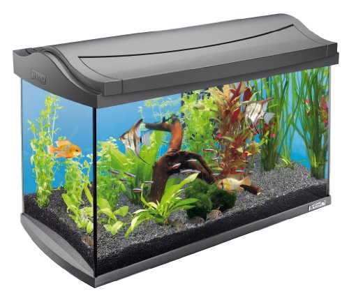 Tetra Aquarium Aquaart Anthracite 60 L