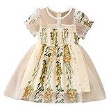 Livoral Mädchen Schönheit Kleid Kleinkind Kleinkind Baby Kurzarm Blumenstickerei Tüll Party Prinzessin Kleid(Beige,130)