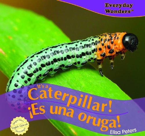 It's a Caterpillar! / Es una oruga! (Everyday Wonders / Maravillas De Todos Los Días) por Elisa Peters