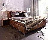 DELIFE Bett Cloud Braun 180x200 cm Kingsize Matratze Topper Federkern Microvelours