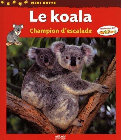 Le koala : Champion d'escalade