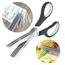 Rapesco Security Paper Shredder/Herb Scissors - 5 Bladed