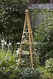 Smart Garden 1.5m Natural Wood Woodland Obelisk Climbing Plant Trellis Support