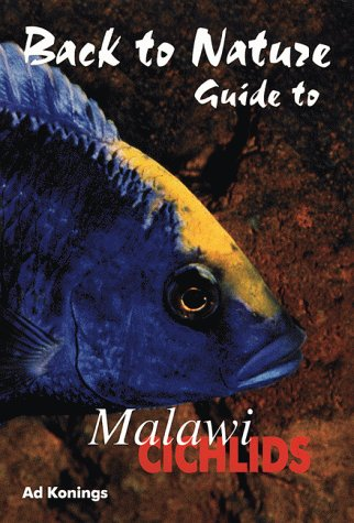 guide-to-malawi-cichlids-back-to-nature