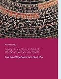 Feng Shui - Das Umfeld als Resonanzkörper der Seele: Das Grundlagenwerk zum Feng Shui - André Pasteur