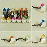 Vögel Deko Echte Federn Styropor Floristik Basteln Hobby Naturgetreu Animals (NR. 1)