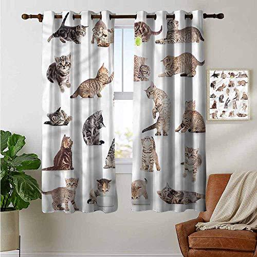 petpany Dekovorhänge von Katze, lustiges Verdunkelungsvorhänge, Verspieltes Baby Kätzchen, breit, hält warm, 1 Paar (106,7 x 182,9 cm) -