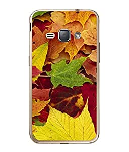 PrintVisa Designer Back Case Cover for Samsung Galaxy J1 (6) 2016 :: Samsung Galaxy J1 2016 Duos :: Samsung Galaxy J1 2016 J120F :: Samsung Galaxy Express 3 J120A :: Samsung Galaxy J1 2016 J120H J120M J120M J120T (Green leafs Dry)